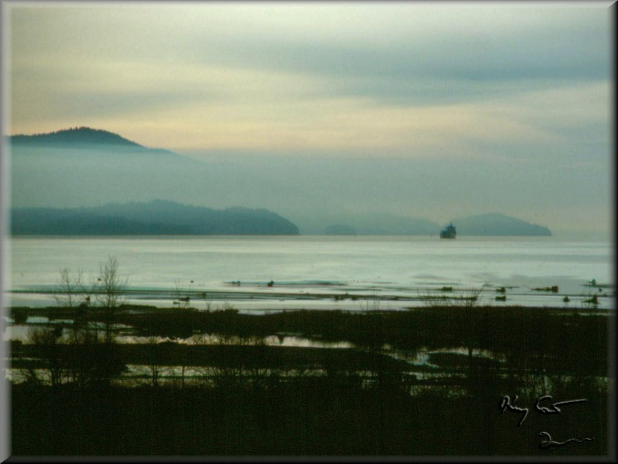 bellingham bay, washington
