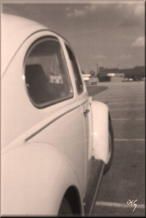 pinhole photograph gallery, vw